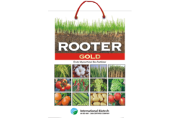 Rooter Gold (Endo Mycorrhizal )